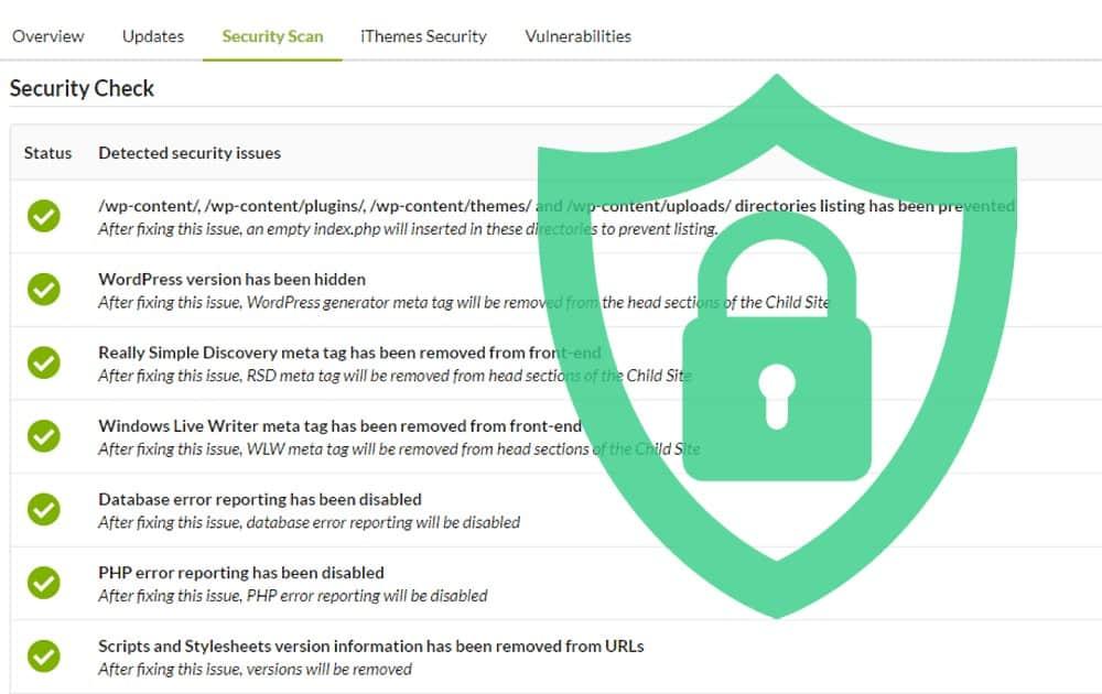Wordpress Website Security Services, Website Security Service
